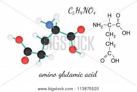 C5H9NO4 glutamic amino acid molecule