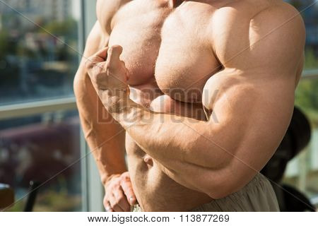 Muscular torso and arms. Bodybuilder with huge muscles. Strong man's torso. Picture of muscular torso, arms and abs. poster