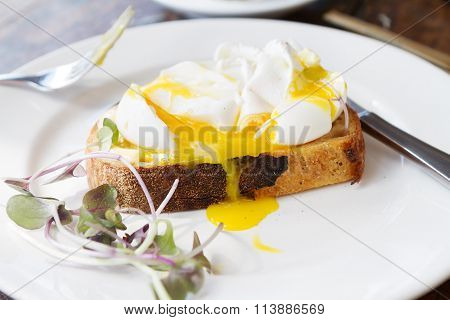 Poached Free Range Eggs On Toast With Dripping Yolk