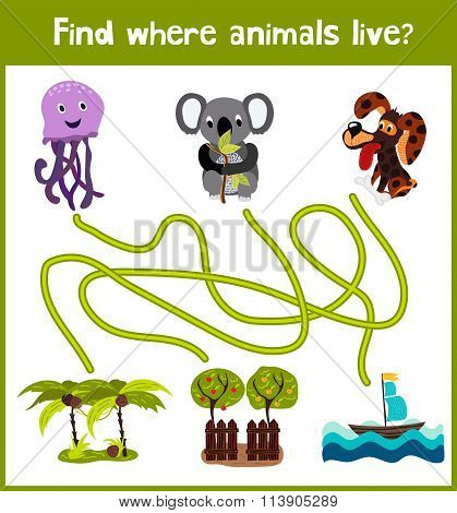 Fun And Colorful Puzzle Game For Children's Development Find Where Is The Australian Koala, The