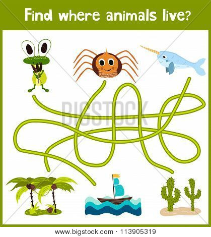 Fun And Colorful Puzzle Game For Children's Development Find Where A Spider, The Narwhal And The