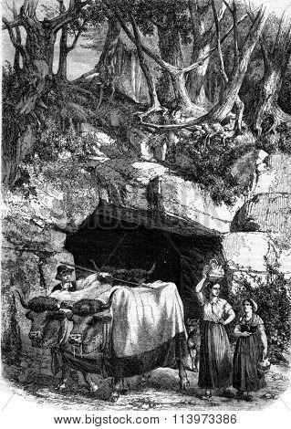 Passage undergrowth near Langon, Gironde, vintage engraved illustration. Magasin Pittoresque 1867.