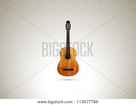 vector acoustic guitar illustration