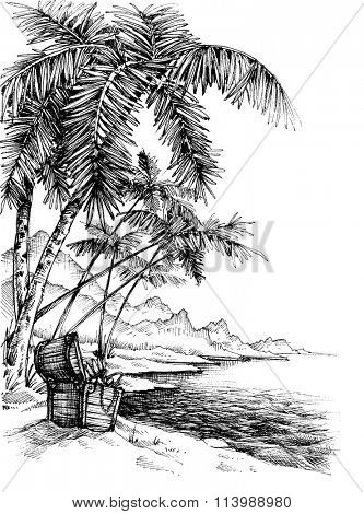 Treasure island sketch. Beautiful palm trees on sea shore and a treasure chest