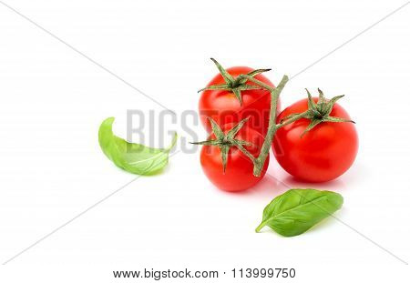 Cherry Tomatoes With Basil Leaves.