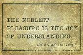 The noblest pleasure is the joy of understanding - ancient Italian artist Leonardo da Vinci quote printed on grunge vintage cardboard poster