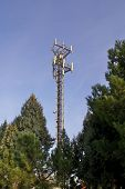 mobile comunications antenna over some trees at a park for 2g (gsm) and 3g (umts/wcdma) handsets in europe. antennas for 3 carriers share the same mast. poster
