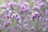 Eyeglasses helping to see a blossoming tree in focus poster
