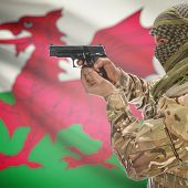 Man with gun in hand and national flag on background series - Wales poster