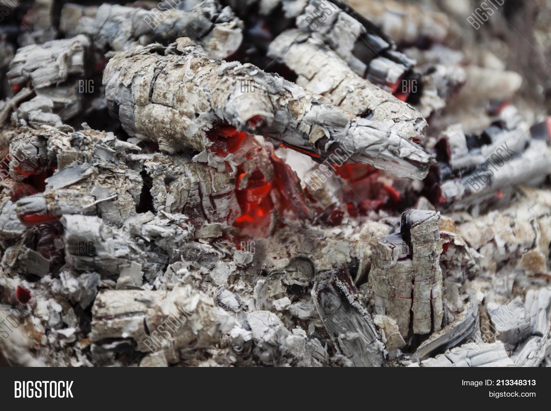 Remains Wood Coal Image Photo Free Trial Bigstock