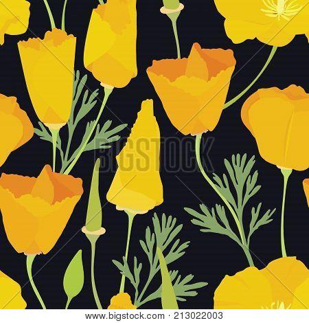 Beautiful yellow flowers Colorful seamless pattern Flowering meadow