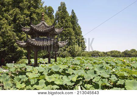HANGZHOU, CHINA - JULY 30, 2012 - Pavilion and lotus pond, West Lake, Hangzhou