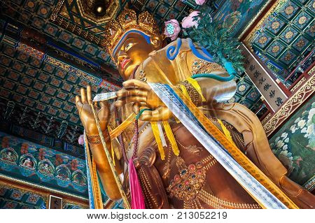 BEIJING, CHINA - FEB 8, 2015 - Maitreya Buddha statue in the Hall of Boundless Happiness, Lama Temple, Beijing. At 26m tall, the statue is the largest wood-carved Buddha statue in the world.