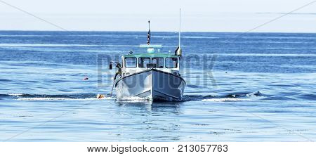 A fisherman is pulling up a lobster trap from the atlantic ocean using a pole to grab the rope under an orange buoy off the coast of Maine.