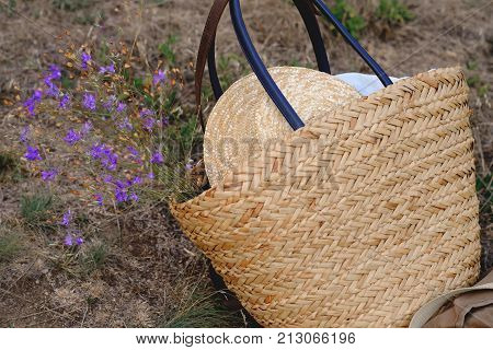 straw hat canyon and bulrush on a stone background