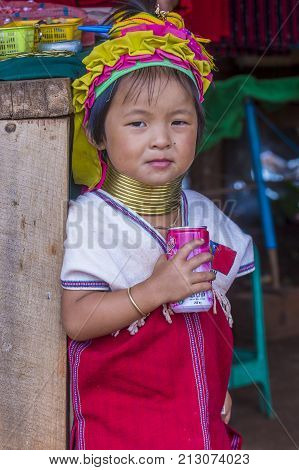 KAYAN STATE MYANMAR - SEP 09 : Portrait of Kayan tribe girl in Kayan state Myanmar on September 09 2017 Kayan tribe woman are well known for wearing neck rings.