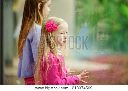 Cute Little Girl Watching Animals At The Zoo On Warm And Sunny Summer Day. Child Watching Zoo Animal