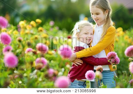 Two Cute Sisters Playing In Blossoming Dahlia Field. Children Picking Fresh Flowers In Dahlia Meadow