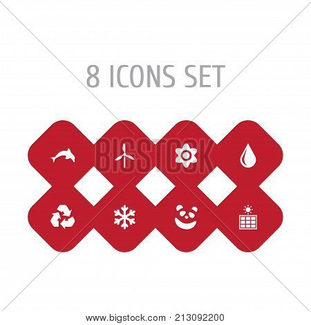 Collection Of Solar Panel, Conservation, Blob And Other Elements.  Set Of 8 Natural Icons Set.