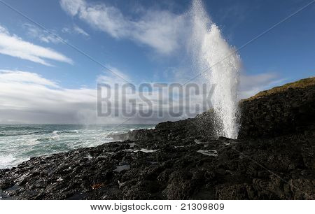 Blowhole in action