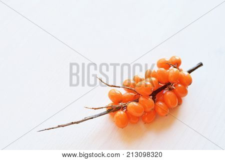 ripe orange sea-buckthorn berries branch with prickles over white wooden background