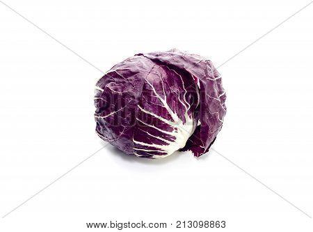 Ingredient of Italian cuisine. Italian salad Radicchio on white background closeup