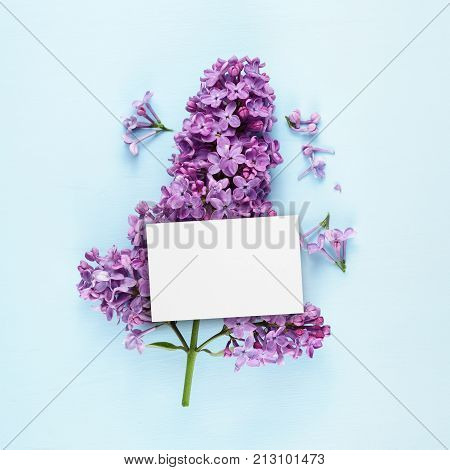 Birthday card and lilac flowers on blue background