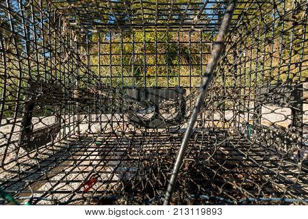 View from Inside a Lobster Cage washed up on sandy beach