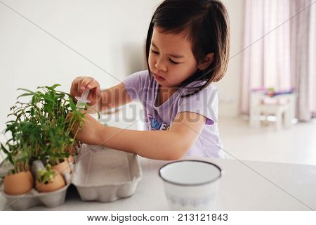 Mixed Asian girl watering plants in eggshells eco gardening montessori education reuse concept
