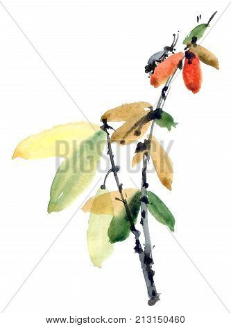 Watercolor and ink illustration of tree branch with leaves and insect in style sumi-e u-sin. Oriental traditional painting.