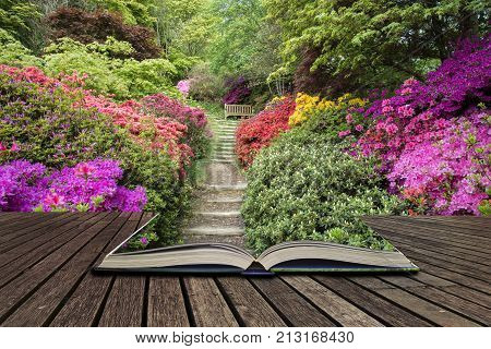 Beautiful Vibrant Landscape Image Of Footpath Border By Azalea Flowers In Spring In England Concept