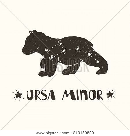 Hand drawn vector illustration of the constellation Ursa Minor on the bear silhouette
