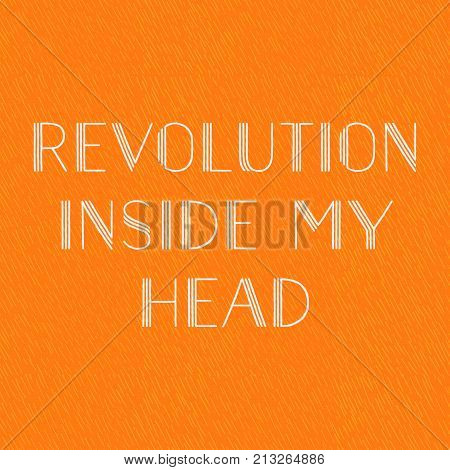 Revolution inside my head, motto, orange background. Vector illustration as a quote, motto, flannel, banner