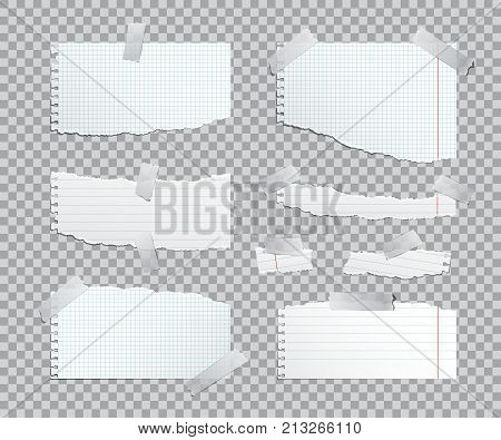 Torn copybook paper sheets with adhesive tape. Vector illustration