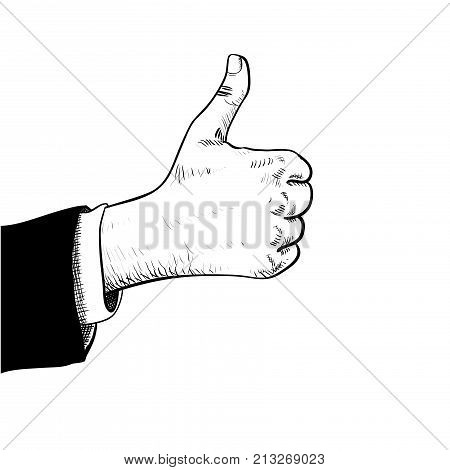 Business man hand thumbs up Hand in suit showing thumbs up isolated on white background with engraving style-Hand drawn Vector Illustration.