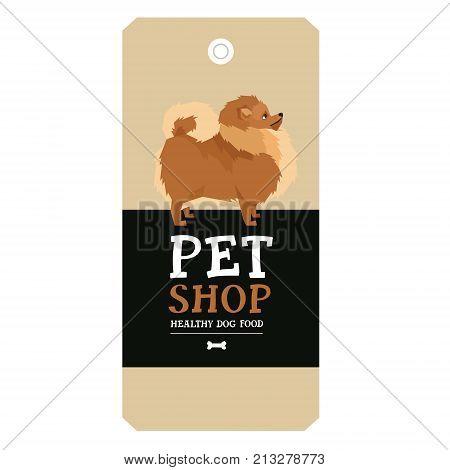 Poster Pet Shop Design label Pomeranian Geometric style set