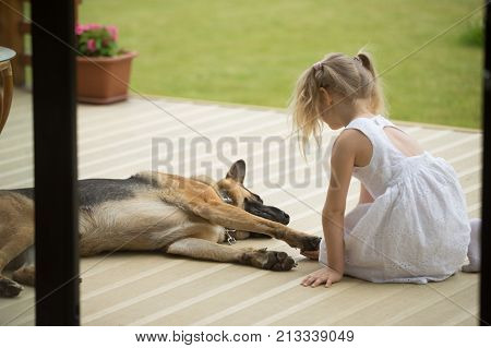 Little girl holding dogs paw sitting near pet on porch, rear view at child supporting domestic animal having disease injury, kid playing with domestic pet showing care, devotion or veterinary concept