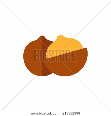 Vector icon of cracked macadamia. Australian plant, exotic fruit, vegetarian food. Nuts concept. Can be used for topics like food, agriculture, plants