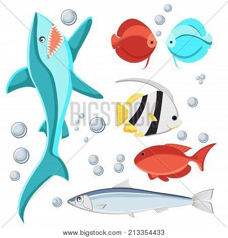 Cartoon style fish and water bubbles set for kids. Shark, sardine, discus, zebrasoma, butterfly fish, Isolated on white background. Flat vector illustration.