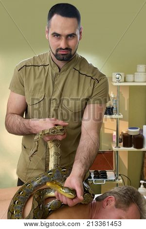 Young therapist putting snakes on man back. Mature man receiving snakes massage in spa salon. Migraine and stress treatment in spa salon with animal therapy.