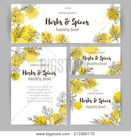 Vector template page decoration, business card culinary herbs in ink retro style for farmers market design. Identity template with herbs and spices .