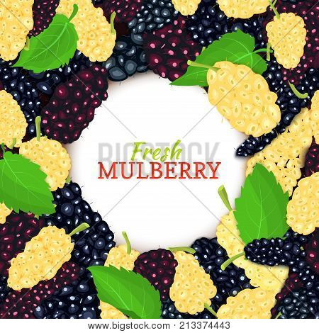 Round colored frame composed of delicious mulberry. Vector card illustration. Berries fresh and juicy mulberry frame for design of food packaging juice breakfast, cosmetics, tea, detox diet.