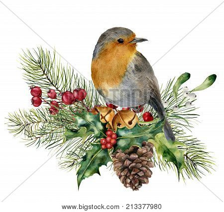 Watercolor Christmas composition with bird. Hand painted robin with fir and berry branch, mistletoe, holly, pine cone and bells isolated on white background. Holiday card.