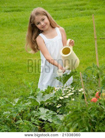 Little girl watering vegetable garden