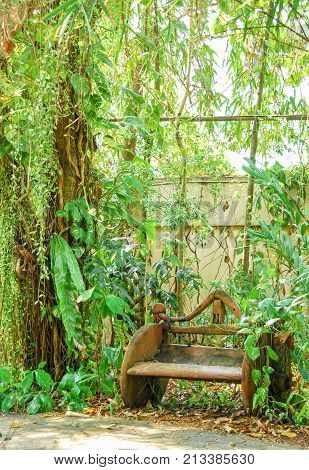 old Wood chair in the green garden
