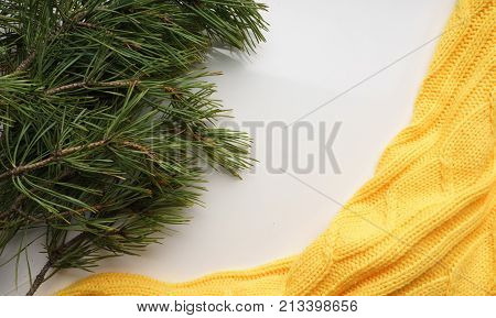 Christmas background with  branches of pine with large needles and a yellow sweater. Top view, close-up