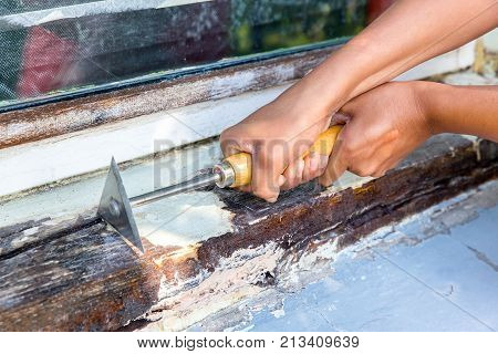 Two female hands working with paint scraper on window