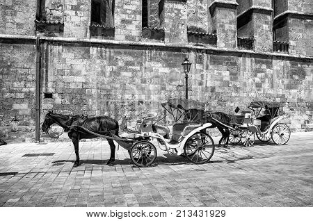 Majorca, Spain. A horse carriage near an old building wall of The Cathedral of Santa Maria of Palma de Majorca, Spain. Black and white