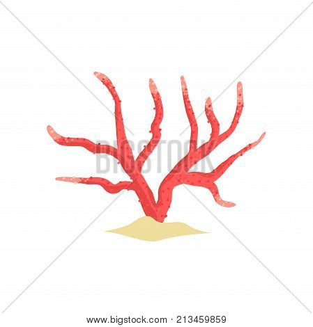 Red antler soft coral on sandy seabed. Tropical plant in flat style. Aquarium design element. Sea and ocean wildlife concept. Underwater world design. Cartoon vector isolated on white background.