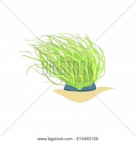 Illustration of long green sea plant. Coral on sandy ocean bottom. Marine invertebrate animal. Underwater world object, design element. Cartoon vector in flat design isolated on white background.
